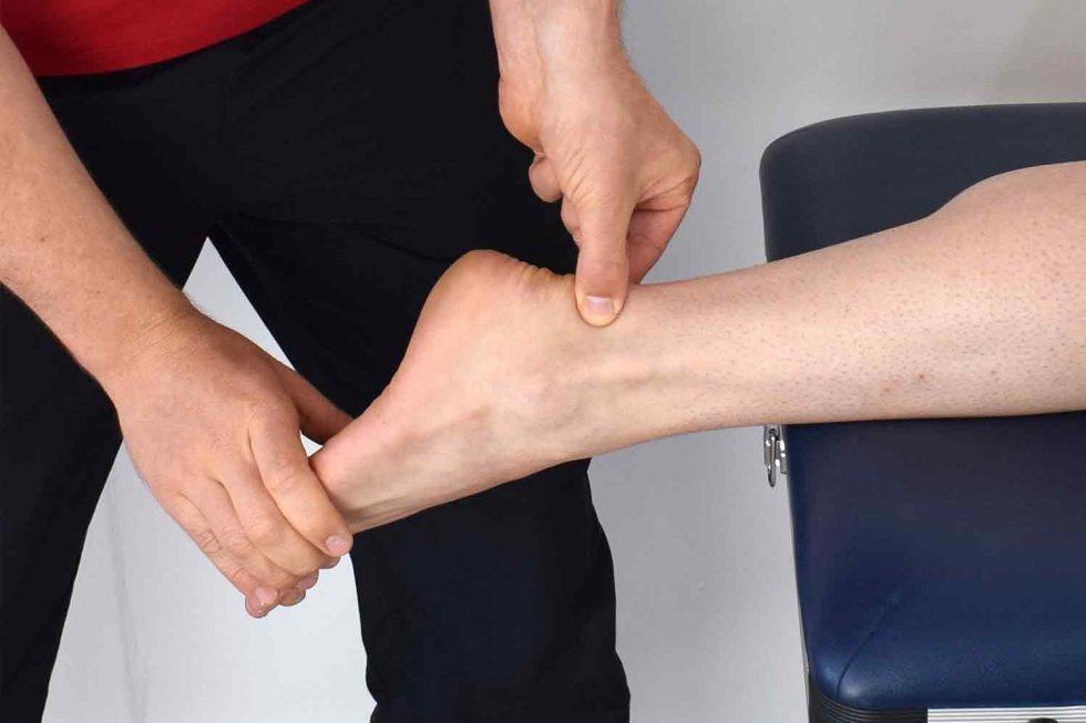Suplementos alimenticios para nuestros huesos, músculos y articulaciones